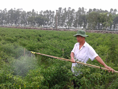 máy phun tưới cây trồng