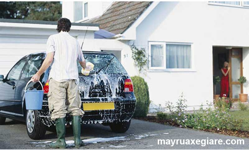 máy rửa xe 2 ngựa
